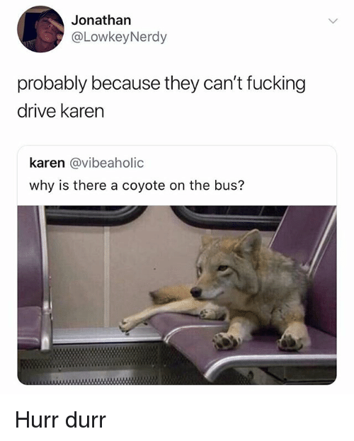 Fucking, Coyote, and Drive: Jonathan  @LowkeyNerdy  probably because they can't fucking  drive karen  karen @vibeaholic  why is there a coyote on the bus? Hurr durr