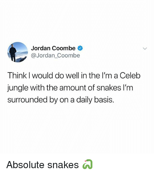 Memes, Jordan, and Snakes: Jordan Coombe  @Jordan_Coombe  Think I would do well in the I'm a Celeb  jungle with the amount of snakes l'm  surrounded by on a daily basis Absolute snakes 🐍