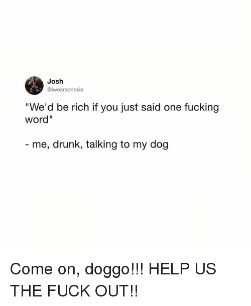 """Drunk, Fucking, and Memes: Josh  @iwearaonesie  We'd be rich if you just said one fucking  word""""  me, drunk, talking to my dog Come on, doggo!!! HELP US THE FUCK OUT!!"""