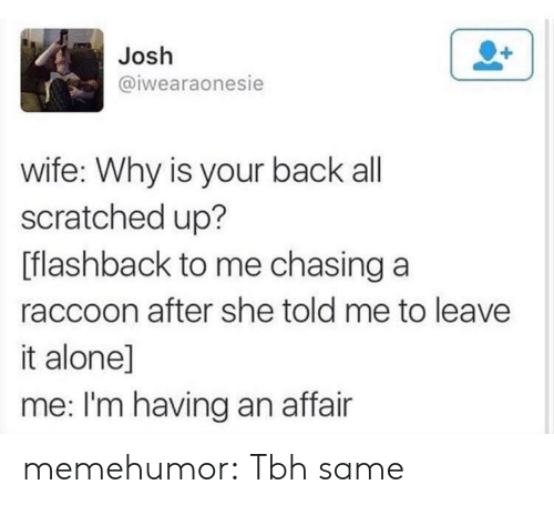 Being Alone, Tbh, and Tumblr: Josh  @iwearaonesie  wife: Why is your back all  scratched up?  [flashback to me chasing a  raccoon after she told me to leave  it alone]  me: I'm having an affair memehumor:  Tbh same