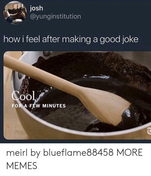Dank, Memes, and Target: Josh  @yunginstitution  how i feel after making a good joke  oO  FOR A FEW MINUTES meirl by blueflame88458 MORE MEMES