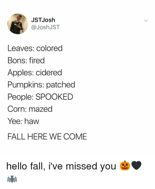 Fall, Hello, and Yee: JSTJosh  @JoshJST  Leaves: colored  Bons: fired  Apples: cidered  Pumpkins: patched  People: SPOOKED  Corn: mazed  Yee: haw  FALL HERE WE COME hello fall, i've missed you 🎃🖤🦇