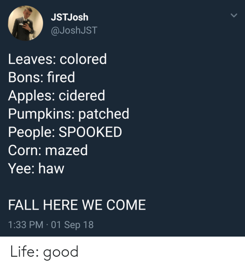 Fall, Life, and Yee: JSTJosh  @JoshJST  Leaves: colored  Bons: fired  Apples: cidered  Pumpkins: patched  People: SPOOKED  Corn: mazed  Yee: haw  FALL HERE WE COME  1:33 PM 01 Sep 18 Life: good