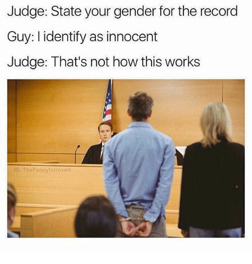 Memes, Record, and 🤖: Judge: State your gender for the record  Guy: I identify as innocent  Judge: That's not how this works  G: TheFunnyintrovert