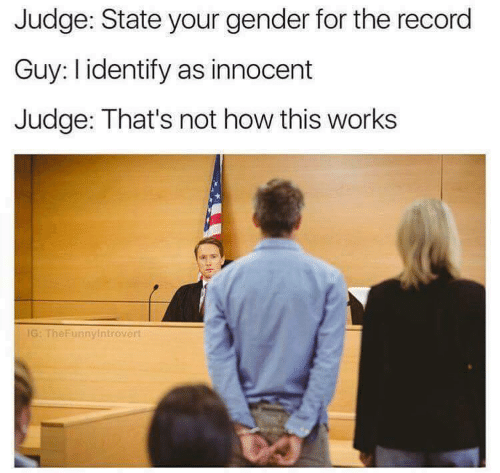 Record, How, and Gender: Judge: State your gender for the record  Guy: l identify as innocent  Judge: That's not how this works  IG: TheFunnyintrovert