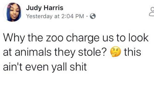 Animals, Shit, and Zoo: Judy Harris  Yesterday at 2:04 PM  Why the zoo charge us to look  at animals they stole? this  ain't even yall shit