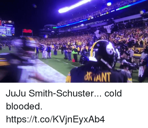 cold blooded: JuJu Smith-Schuster... cold blooded.   https://t.co/KVjnEyxAb4