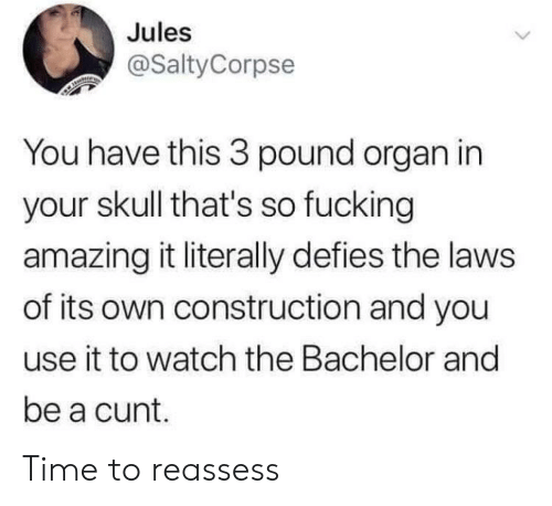 Fucking, Bachelor, and Cunt: Jules  @SaltyCorpse  You have this 3 pound organ in  your skull that's so fucking  amazing it literally defies the laws  of its own construction and you  use it to watch the Bachelor and  be a cunt. Time to reassess