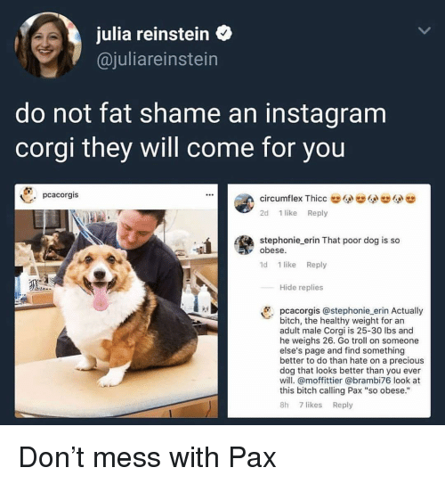 "Bitch, Corgi, and Instagram: julia reinstein  @juliareinstein  do not fat shame an instagram  corgi they will come for you  pcacorgis  circumflex ThiccG  2d 1 like Reply  stephonie erin That poor dog is so  obese  1d 1 like Reply  Hide replies  pcacorgis @stephonie erin Actually  bitch, the healthy weight for an  adult male Corgi is 25-30 lbs and  he weighs 26. Go troll on someone  else's page and find something  better to do than hate on a precious  dog that looks better than you ever  will. @moffittier @brambi76 look at  this bitch calling Pax ""so obese.""  8h 7 likes Reply Don't mess with Pax"