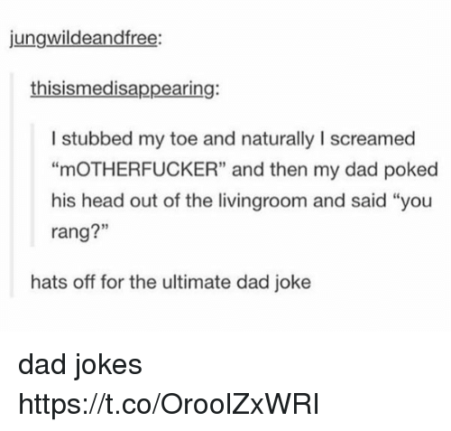"""Dads Jokes: jungwildeandfree:  thisismedisappearing:  I stubbed my toe and naturally I screamed  """"mOTHERFUCKER"""" and then my dad poked  his head out of the livingroom and said """"you  rang?""""  hats off for the ultimate dad joke dad jokes https://t.co/OroolZxWRI"""