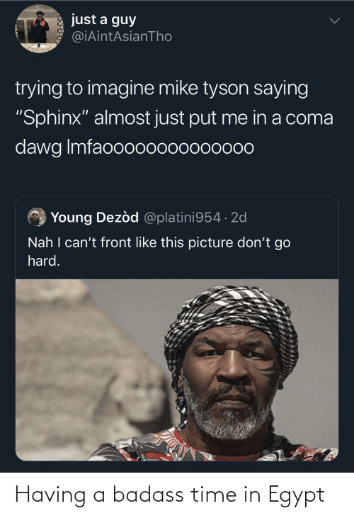 "dawg: just a guy  @iAintAsianTho  trying to imagine mike tyson saying  ""Sphinx"" almost just put me in a coma  dawg Imfaooo00000000000  Young Dezòd @platini954 · 2d  Nah I can't front like this picture don't go  hard. Having a badass time in Egypt"