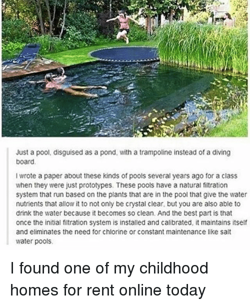 Ironic, Run, and Best: Just a pool, disguised as a pond, with a trampoline instead of a diving  board  I wrote a paper about these kinds of pools several years ago for a class  when they were just prototypes. These pools have a natural fitration  system that run based on the plants that are in the pool that give the water  nutrients that allow it to not only be crystal clear, but you are also able to  drink the water because it becomes so clean. And the best part is that  once the initial filtration system is installed and calibrated, it maintains itself  and eliminates the need for chlorine or constant maintenance like sallt  water pools I found one of my childhood homes for rent online today
