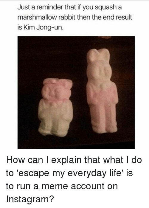 thats what i do: Just a reminder that if you squash a  marshmallow rabbit then the end result  is Kim Jong-un. How can I explain that what I do to 'escape my everyday life' is to run a meme account on Instagram?