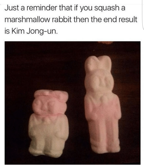 Kim Jong-Un, Rabbit, and Squash: Just a reminder that if you squash a  marshmallow rabbit then the end result  is Kim Jong-un