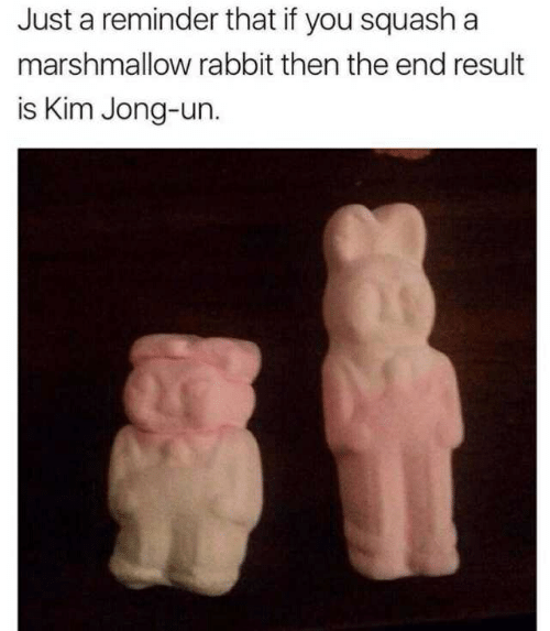 Kim Jong-Un, Rabbit, and Squash: Just a reminder that if you squash a  marshmallow rabbit then the end result  is Kim Jong-un.