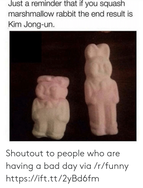 Bad, Bad Day, and Funny: Just a reminder that if you squash  marshmallow rabbit the end result is  Kim Jong-un. Shoutout to people who are having a bad day via /r/funny https://ift.tt/2yBd6fm