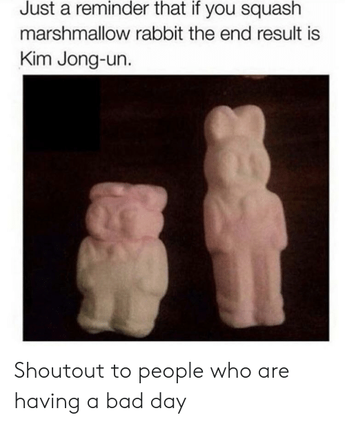 Kim Jong-un: Just a reminder that if you squash  marshmallow rabbit the end result is  Kim Jong-un. Shoutout to people who are having a bad day