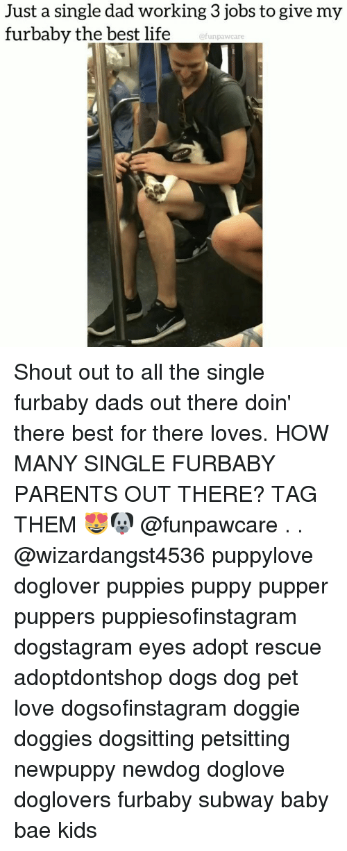 Bae, Dad, and Dogs: Just a single dad working 3 jobs to give my  furbaby the best life  @funpawcare Shout out to all the single furbaby dads out there doin' there best for there loves. HOW MANY SINGLE FURBABY PARENTS OUT THERE? TAG THEM 😻🐶 @funpawcare . . @wizardangst4536 puppylove doglover puppies puppy pupper puppers puppiesofinstagram dogstagram eyes adopt rescue adoptdontshop dogs dog pet love dogsofinstagram doggie doggies dogsitting petsitting newpuppy newdog doglove doglovers furbaby subway baby bae kids