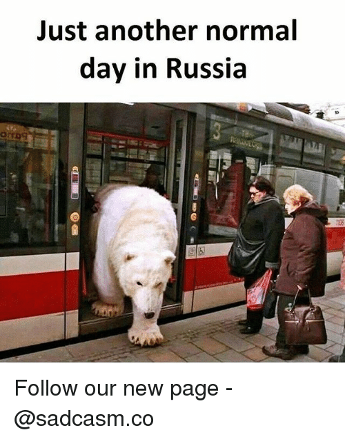Memes, Russia, and 🤖: Just another normal  day in Russia  120 Follow our new page - @sadcasm.co