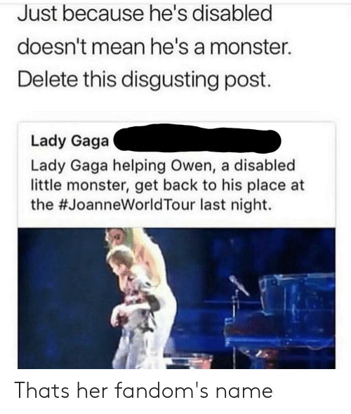 Facepalm, Lady Gaga, and Monster: Just because he's disabled  doesn't mean he's a monster.  Delete this disgusting post  Lady Gaga  Lady Gaga helping Owen, a disabled  little monster, get back to his place at  the #JoanneWorldTour last night. Thats her fandom's name