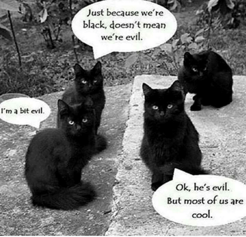 Memes, Black, and Mean: Just because we re  black, doesn't mean  we're evil  I'm a bit evi.  C%  Ok, he's evil.  But most of us are  COO