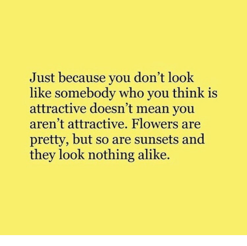 Flowers, Mean, and Who: Just because you don't look  like somebody who you think is  attractive doesn't mean you  aren't attractive. Flowers are  pretty, but so are sunsets and  they look nothing alike.