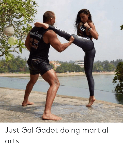 Martial, Arts, and Gal Gadot: Just Gal Gadot doing martial arts