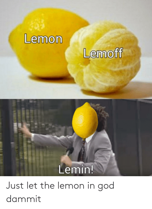 Dammit: Just let the lemon in god dammit