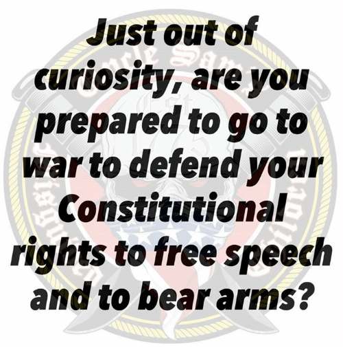 Bear, Free, and Arms: Just out of  curiosity, are yoiu  prepared to go to  war to defend your  Constitutional  rights to free speech  and to bear arms?