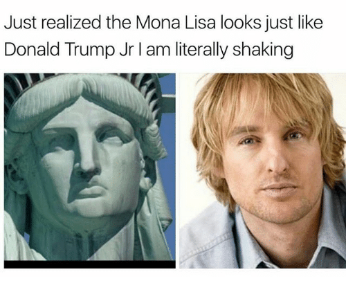 Donald Trump, Memes, and Mona Lisa: Just realized the Mona Lisa looks just like  Donald Trump Jr l am literally shaking
