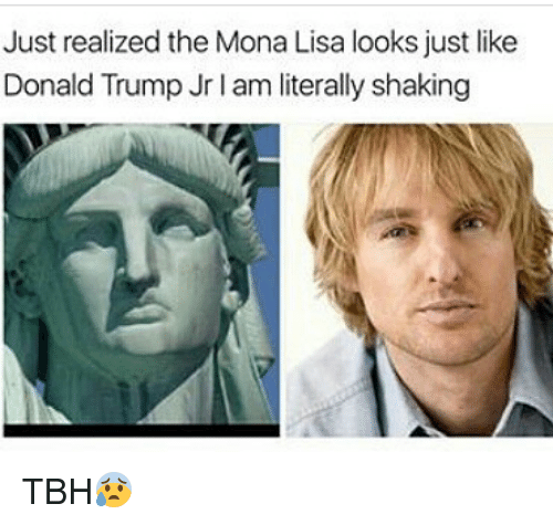 Donald Trump, Memes, and Tbh: Just realized the Mona Lisa looks just like  Donald Trump Jrlam literally shaking TBH😰