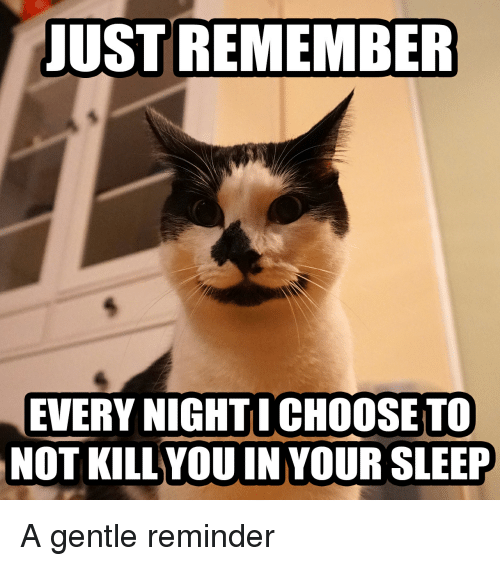 LOLcats: JUST REMEMBER  EVERY NIGHTI CHOOSE TO  NOT KILL YOUIN YOUR SLEEP A gentle reminder