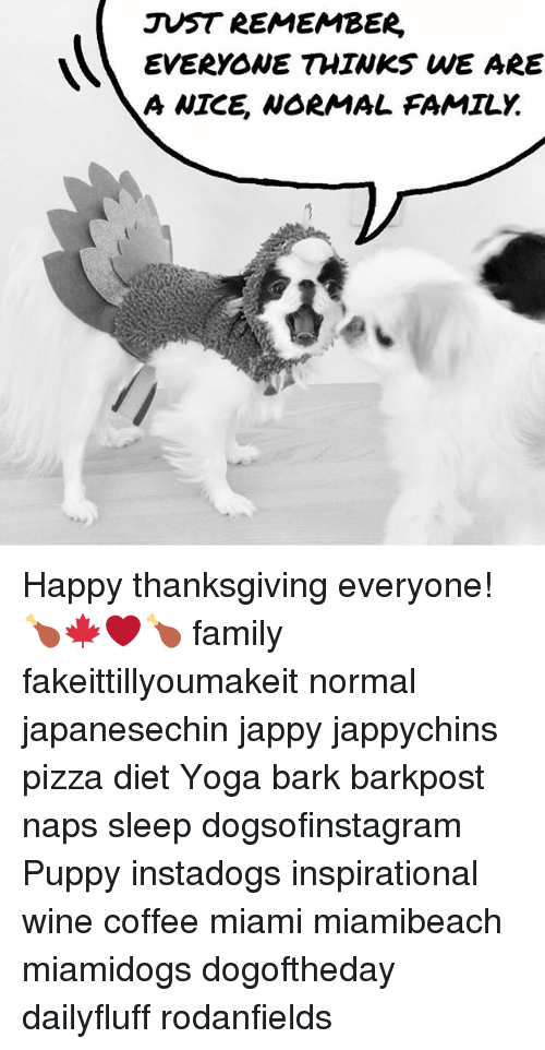 Family, Memes, and Pizza: JUST REMEMBER,  EVERYONE THINKS WE ARE  A NICE, NORMAL FAMILY. Happy thanksgiving everyone! 🍗🍁❤️🍗 family fakeittillyoumakeit normal japanesechin jappy jappychins pizza diet Yoga bark barkpost naps sleep dogsofinstagram Puppy instadogs inspirational wine coffee miami miamibeach miamidogs dogoftheday dailyfluff rodanfields