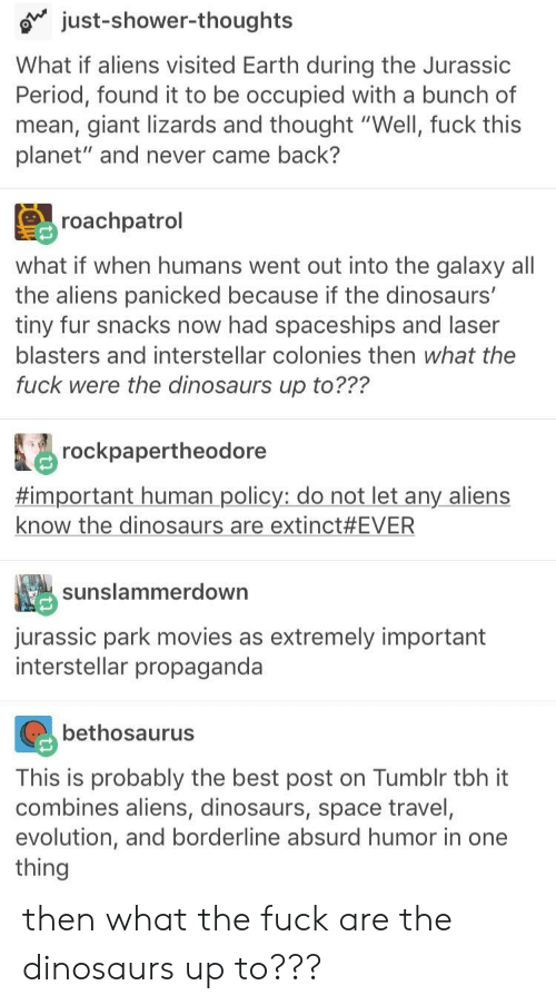 "laser: just-shower-thoughts  What if aliens visited Earth during the Jurassic  Period, found it to be occupied with a bunch of  mean, giant lizards and thought ""Well, fuck this  planet"" and never came back?  roachpatrol  what if when humans went out into the galaxy all  the aliens panicked because if the dinosaurs'  tiny fur snacks now had spaceships and laser  blasters and interstellar colonies then what the  fuck were the dinosaurs up to???  rockpapertheodore  #important human policy: do not let any aliens  know the dinosaurs are extinct #EVER  sunslammerdown  jurassic park movies as extremely important  interstellar propaganda  bethosaurus  This is probably the best post on Tumblr tbh it  combines aliens, dinosaurs, space travel,  evolution, and borderline absurd humor in one  thing then what the fuck are the dinosaurs up to???"