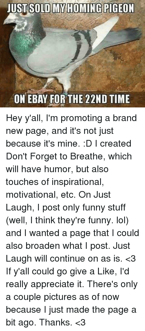 eBay, Funny, and Lol: JUST SOLD MY HOMING PIGEON  ON EBAY FOR THE 22ND TIME Hey y'all, I'm promoting a brand new page, and it's not just because it's mine. :D I created Don't Forget to Breathe, which will have humor, but also touches of inspirational, motivational, etc. On Just Laugh, I post only funny stuff (well, I think they're funny. lol) and I wanted a page that I could also broaden what I post. Just Laugh will continue on as is. <3 If y'all could go give a Like, I'd really appreciate it. There's only a couple pictures as of now because I just made the page a bit ago. Thanks. <3