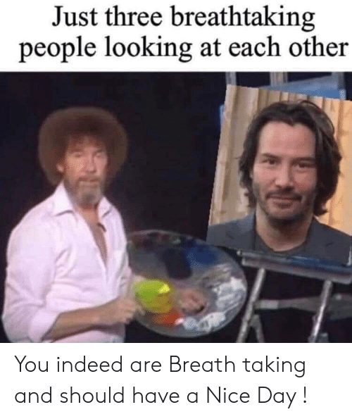 Indeed, Nice, and Looking: Just three breathtaking  people looking at each other You indeed are Breath taking and should have a Nice Day !