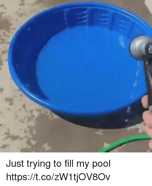Funny, Pool, and Just: Just trying to fill my pool https://t.co/zW1tjOV8Ov