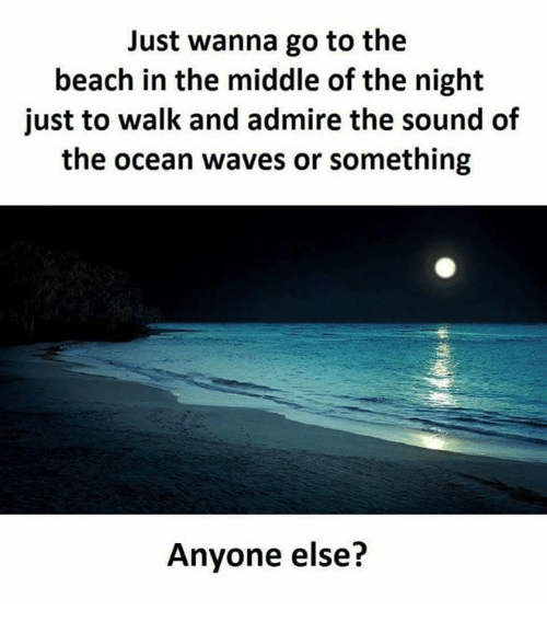 Memes, Waves, and Beach: Just wanna go to the  beach in the middle of the night  just to walk and admire the sound of  the ocean waves or something  Anyone else?
