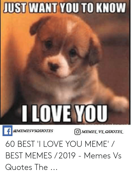 Love, Meme, and Memes: JUST WANT YOU TO KNOW  ILOVE YOU  MEMESVSOUOIES  O MEMES V QUOTES 60 BEST 'I LOVE YOU MEME' / BEST MEMES / 2019 - Memes Vs Quotes The ...