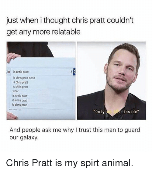 """Chris Pratt, Memes, and Animal: just when i thought chris pratt couldn't  get any more relatable  ale ischris pratt  is chris pratt dead  is chris pratt  is chris pratt  what  is chris pratt  is chris pratt  is chris pratt  """"Only  He inside  And people ask me why I trust this man to guard  our galaxy. Chris Pratt is my spirt animal."""