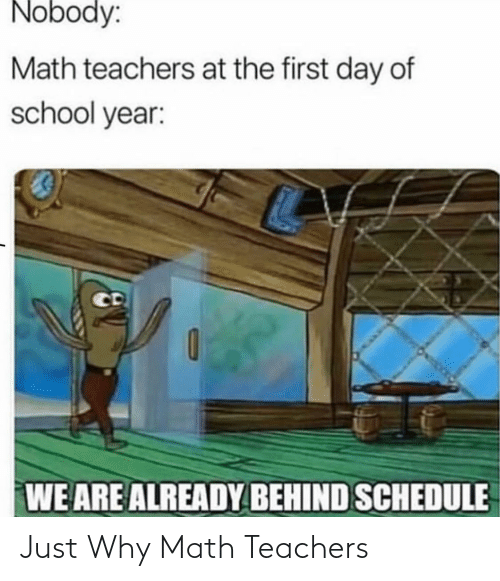 Math: Just Why Math Teachers