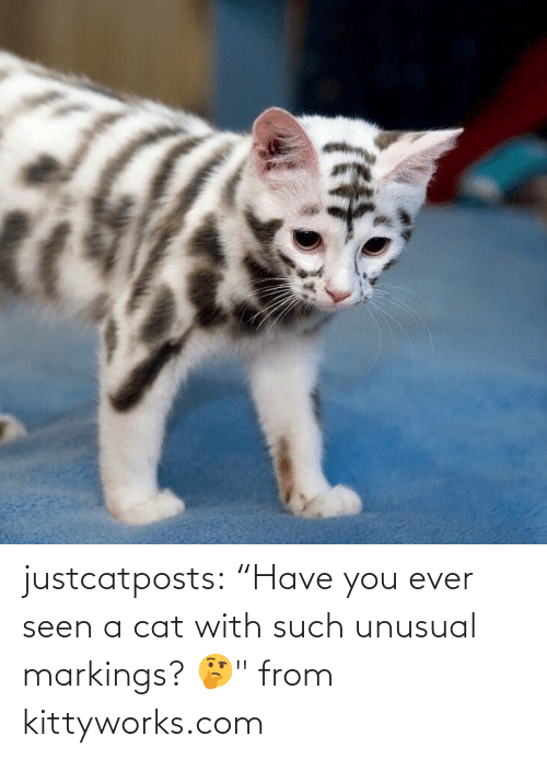 "From: justcatposts:  ""Have you ever seen a cat with such unusual markings? 🤔"" from kittyworks.com"