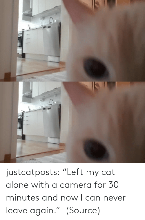 "Leave: justcatposts:  ""Left my cat alone with a camera for 30 minutes and now I can never leave again.""  (Source)"