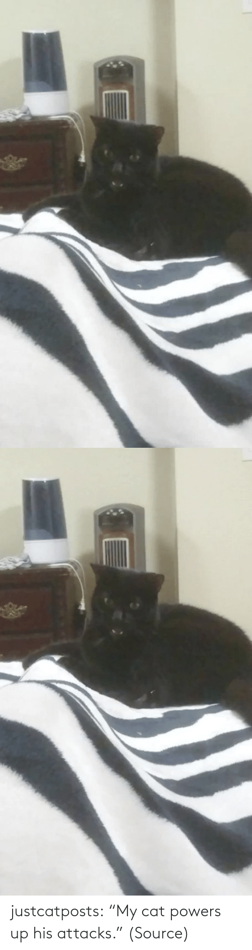 "cat: justcatposts:  ""My cat powers up his attacks."" (Source)"