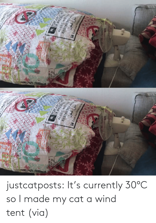 I Made: justcatposts:  It's currently 30°C so I made my cat a wind tent (via)