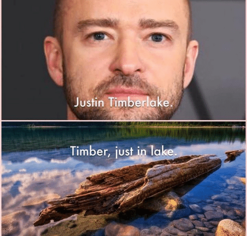 Justin TImberlake, Memes, and 🤖: Justin Timberlake  Timber, just in lake