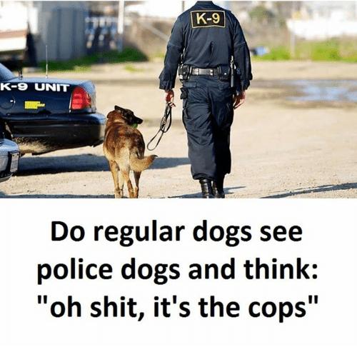 """Dogs, Police, and Shit: K-9  K-9 UNIT  Do regular dogs see  police dogs and think:  """"oh shit, it's the cops"""""""