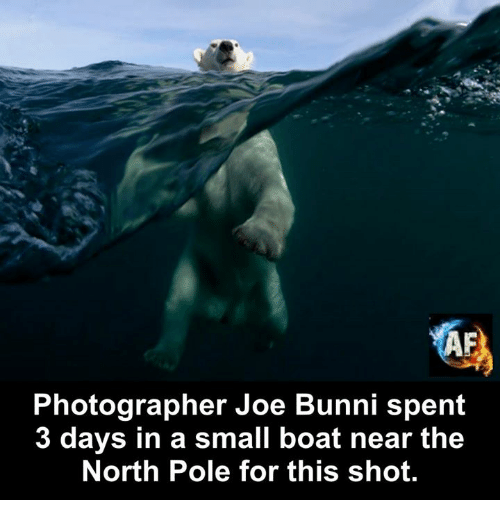 Bunni: KA  Photographer Joe Bunni spent  3 days in a small boat near the  North Pole for this shot.