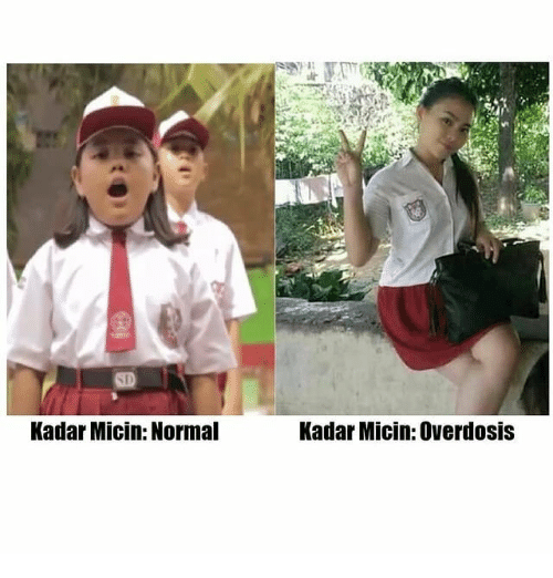 Indonesian (Language) and Normal: Kadar Micin: Normal  Kadar Micin: Overdosis