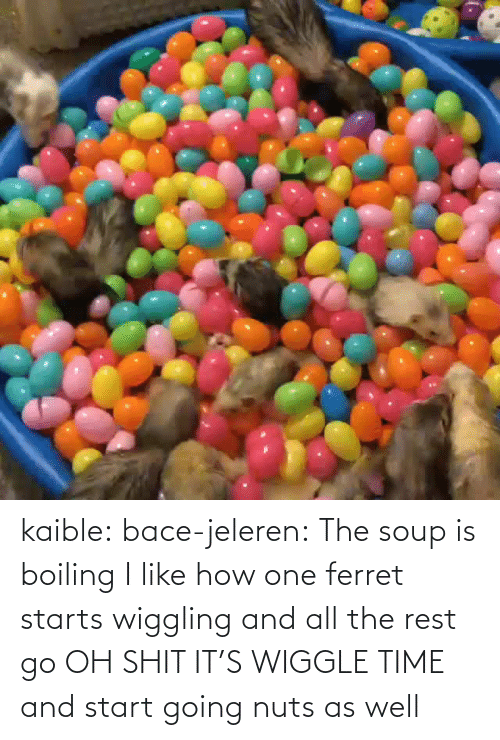 as well: kaible: bace-jeleren: The soup is boiling    I like how one ferret starts wiggling and all the rest go OH SHIT IT'S WIGGLE TIME and start going nuts as well